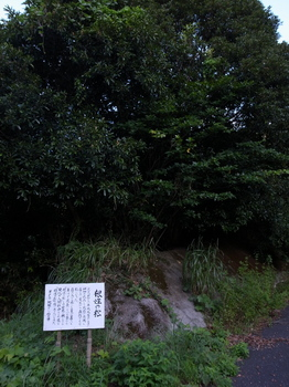 宮崎~鹿児島 4泊5日の旅 104.jpg